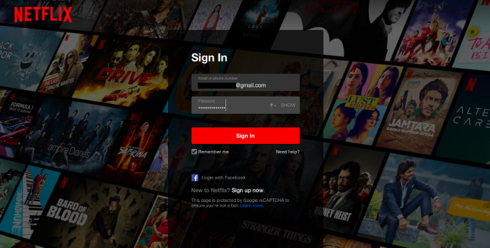Netflix Sign in Page