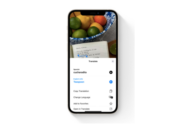 Live Text Feature in iOS